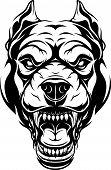 Vector illustration, head of a ferocious pit bull growls, black contour on white background. poster