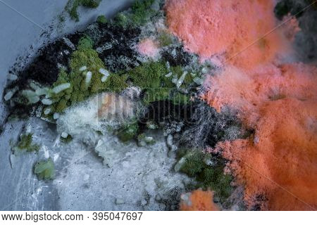 Orange Moldy Rice In The Pot, Spoiled Rice ,fungus In Rice. It Is Rotten And Has A Bad Smell.spores
