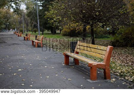 Benches In The Autumn Park Benches In The Autumn Park