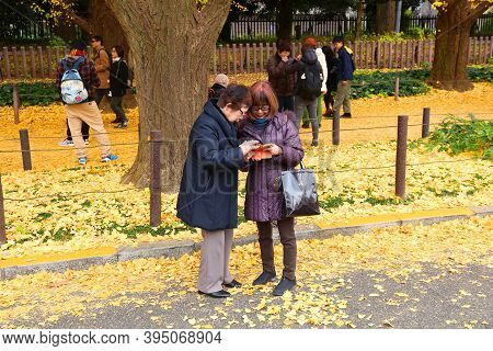 Tokyo, Japan - November 30, 2016: People Celebrate Ginkgo Avenue Autumn Foliage In Tokyo, Japan. Ich
