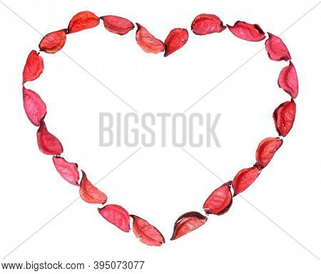 Heart shaped framing made of red rose petals on white background