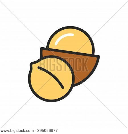 Macadamia Color Line Icon. Isolated Vector Element. Outline Pictogram For Web Page, Mobile App, Prom
