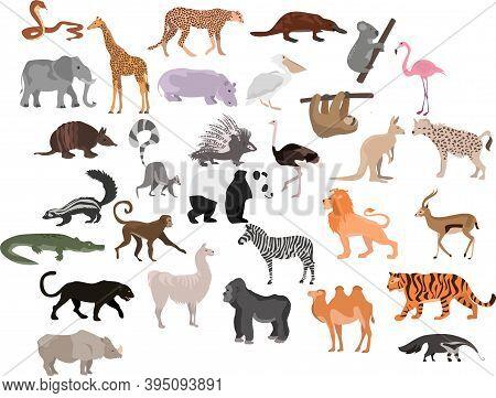 Set Of Cute Cartoon Animals. African Animals. Animals
