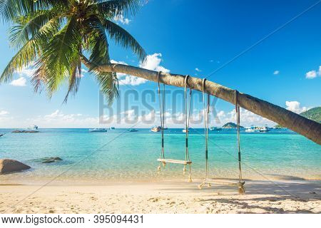 Beautiful tropical island beach with coconut palm trees and two swings, koh Tao, Thailand