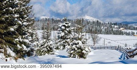 Winter Remote Alpine Mountain Village Outskirts, Countryside Hills, Groves And Farmlands. Panorama.