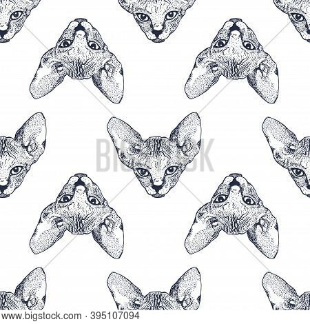 Heads Sphinx Kittens Seamless Pattern. The Cat Is Spotty. Prints For Clothes, T-shirts. Vector