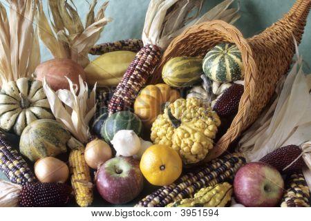 Cornucopia Of Fall Decorative Fruits