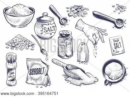 Hand Drawn Salt. Salting Crystal, Glass Bottle With Powder, Spoon With , Saltshaker Sketch Collectio