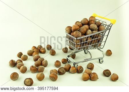 Nutritious Hazelnuts In A Basket And Scattered On The Ground. Hazelnuts In A Shopping Basket. Health