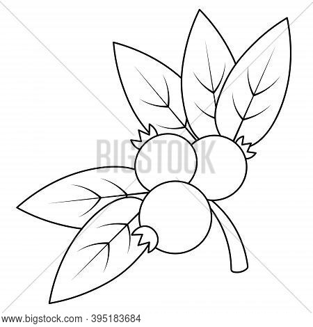 Lingonberry. A Sprig Of Juicy Berries. Vector Illustration. Outline On An Isolated White Background.