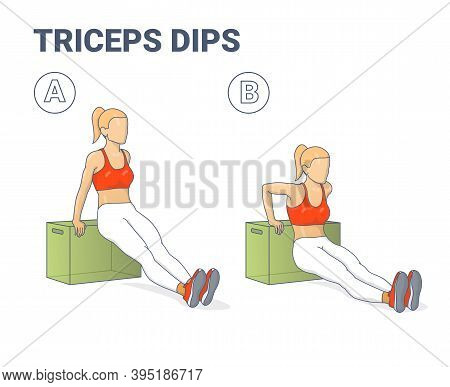 Girl Doing Triceps Dips Exercise Illustration. Colorful Concept Of Girl Weight Loss Workout.