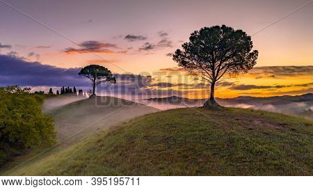 Dreamy Landscape With Rolling Hills, Cypress Trees And Morning Fog At Sunrise In Tuscany, Italy, Apr