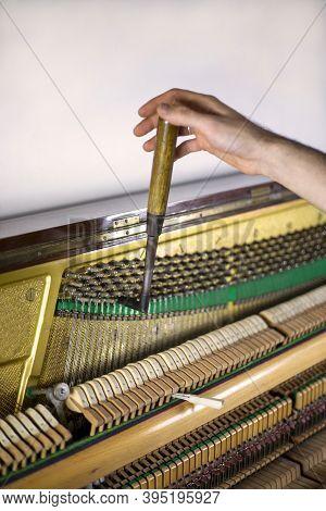 Piano Tune, Key Press, Piano Tune, Tuner, Musical., Vertical,