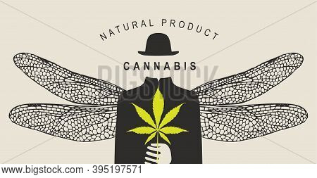 Vector Banner For Legalize Marijuana With Words Natural Product Cannabis. Creative Illustration With