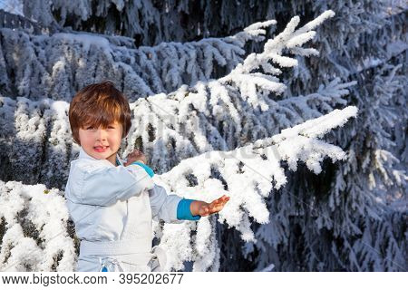 New Years is soon. Handsome boy in white judo uniform training for judo. Winter coniferous forest. Huge spruce covered with snow.