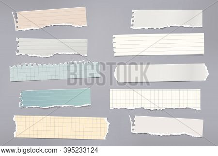 Set Of Torn White And Colorful Note, Notebook Paper Pieces Stuck On Gray Background. Vector Illustra
