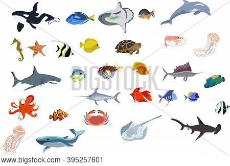 Set Of Many Sea Creatures. Different Kind Of Sea Animals