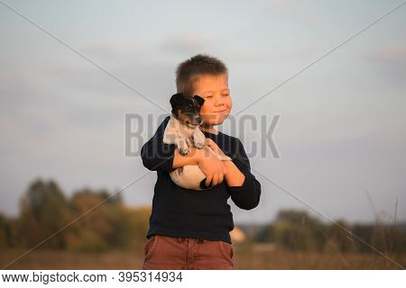 Cute Boy Playing With His Dog In The Meadow. Little Puppy Jack Russel Terrier On The Walk With Owner