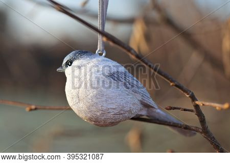 Spring Time. Decorative Bird On A Branch On A Blurred Spring Forest Background.spring Beautiful Back