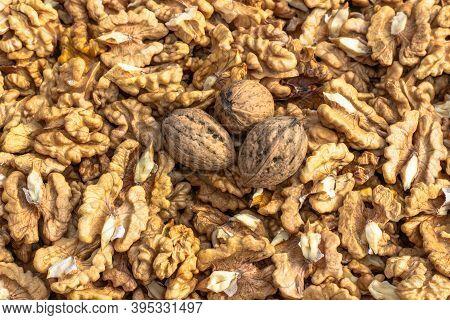Closeup Of Big Shelled Walnuts Pile. Walnut Kernels And Whole Walnuts Top View. Fresh Raw Walnuts Fu