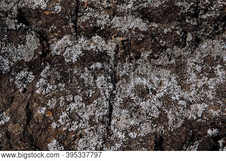 Stone Cliff Mountain Texture, Surface Precipice Of The Rock Background.