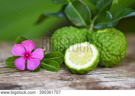 Fresh Bergamot Fruit And Pink Flower, Kaffir Lime, Citrus Bergamia With Leaf On Wooden Table / Slice