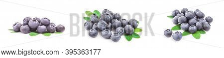 Group Of Great Bilberry Isolated On A White Background