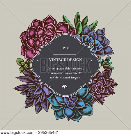 Badge Over Design With Succulent Echeveria, Succulent Echeveria, Succulent Stock Illustration