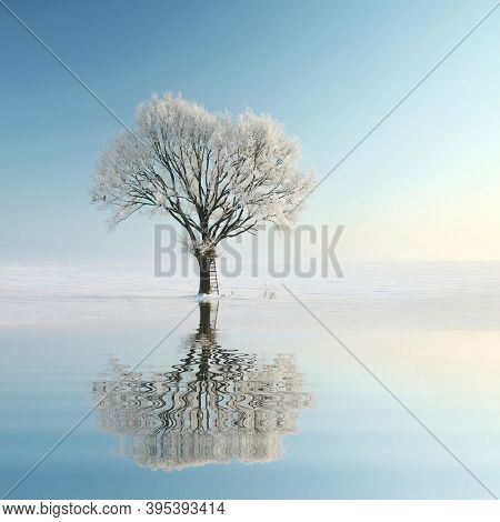 Winter tree sunrise Nature landscape Nature background Nature background landscape frost snow Nature landscape background landscape Nature landscape Nature landscape Nature landscape trees Nature background Nature background landscape Nature background.