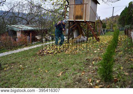 A Farmer In The Village Rakes Up Fallen Autumn Leaves