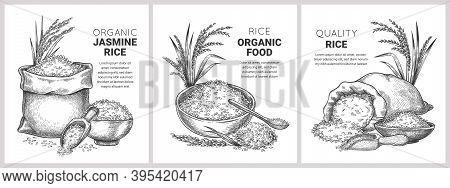 Hand Drawn Rice Label. Retro Sketch Organic Cereal Grains In Bag And Bowl. Farm Basmati Wild Jasmine