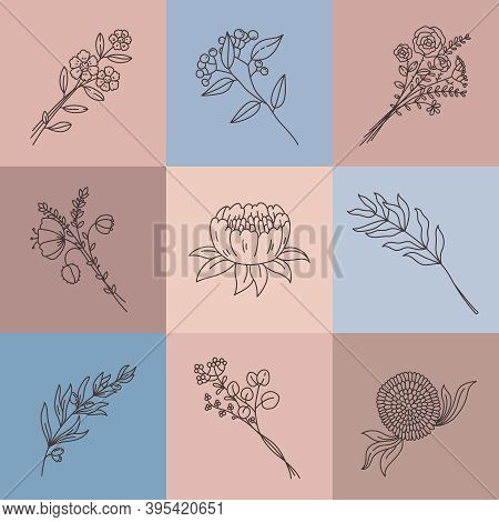 Minimalist Line Flowers. Simple Poster With Abstract Meadow Bouquet. Elegant Outline Flower, Branch,
