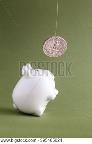 Piggy Bank On Hind Legs Begging For Coin. Financial Savings Intention For Money Abundance, Lure Of F