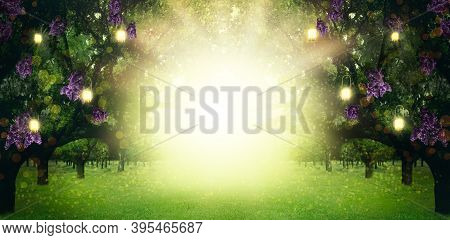 Fantasy World. Trees With Magic Lights And Blossoming Flowers In Enchanted Forest, Banner Design