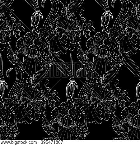 Seamless Pattern Of Flowers And Leaves Of Monochrome Irises In Vintage Style Art Nouveau And Art Dec