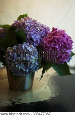 Blossoming Flower Bouquet Of Fresh Hydrangea On Table. Bunch Of Blue, Pink Hydrangeas. Tender Fluffy