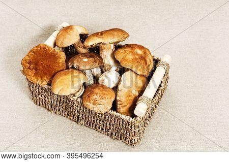 Boletus Edulis King Bolete Mushrooms In Wicker Basket On Textile Background. Autumn Cep Mushrooms. G