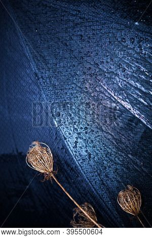 Abstract Dark Blue Background. Dry Grass On A Blurry Background Of A Wet Umbrella. Wet Fabric. Abstr