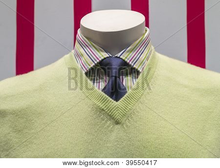 Green Sweater, Striped Shirt And Blue Tie (front View)