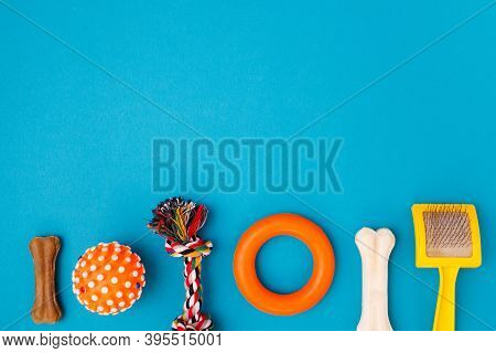 Set Of Accessories For The Dog On Blue Background. Ball For Game, Goodies. Caring Concept. Canine Ba
