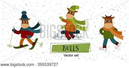 Vector Set Of Bulls. Funny Bulls Play Winter Games: Skiing,  Sledding, Ice Skating. The Bull Is A Sy