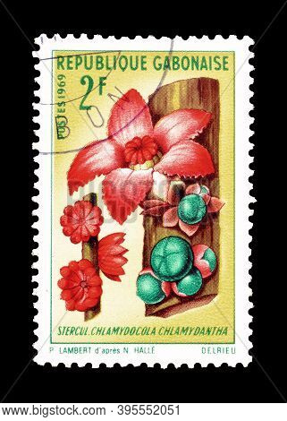Gabon - Circa 1969 : Cancelled Postage Stamp Printed By Gabon, That Shows Chlamydocola Chlamydantha
