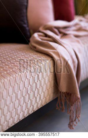 Stylish Interior Of Living Room With Design Pink Velvet Sofa, Velur Pillows And Plaid. Modern Home D