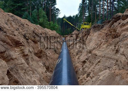 Installation Natural Gas Pipeline In Tranch. Crude Oil Pipes Installation For Transporting Fuel Supp
