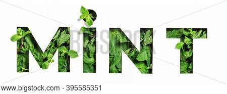 Lettering Of English Word Mint Of Green Natural Leaves And Cut Paper Isolated On White. Menthol Type