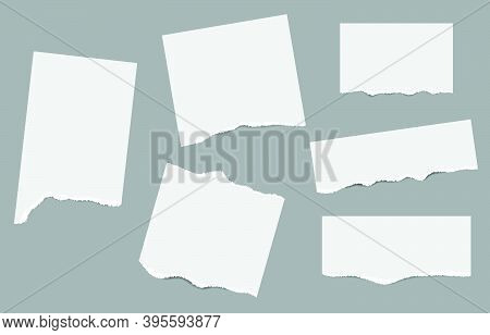 Vector Of Ripped Paper. The Paper Was Ripped Background.