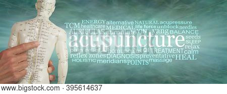 Words Associated With Acupuncture Word Cloud Banner - Hands Holding An Acupuncture Points Dummy Besi