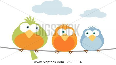 Three Bird On Wire
