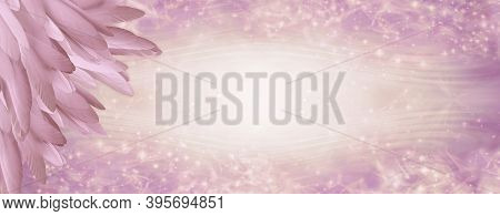 Pink Angel Feather Message Banner Background - A Pile Of Long Pink Coloured Feathers In Left Corner