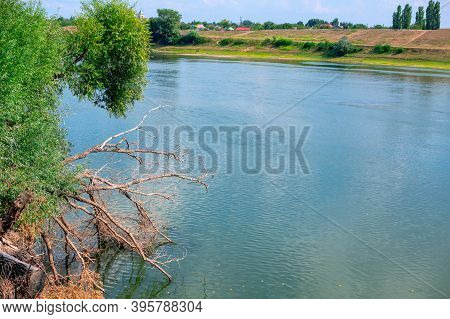 Rustic River Scenery With Fallen Tree In Water